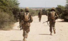 Somalia's al Shabaab says kills dozens of Kenyan troops in raid on base