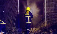 Man sets fire to palm tree, customs warehouse damaged