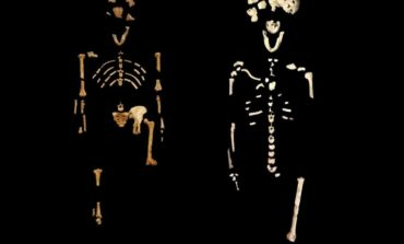 Humans lived in Africa with human-like species 300,000 years ago