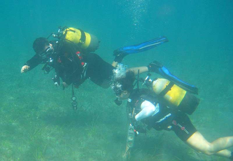 Artificial reef in Polis sea gets go ahead