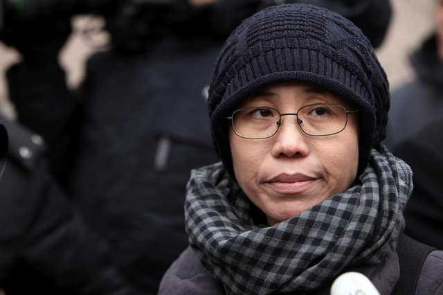 China's Nobel laureate Liu dies in custody