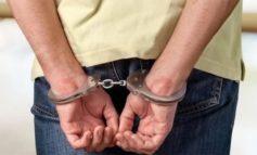 Police arrest would-be burglar