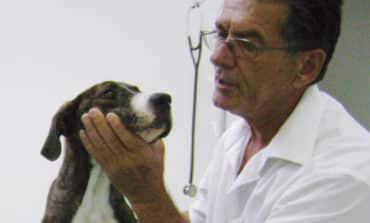 President appoints animal welfare adviser