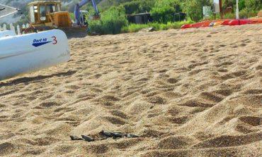 Akamas turtle hazard party halted (Update 2)