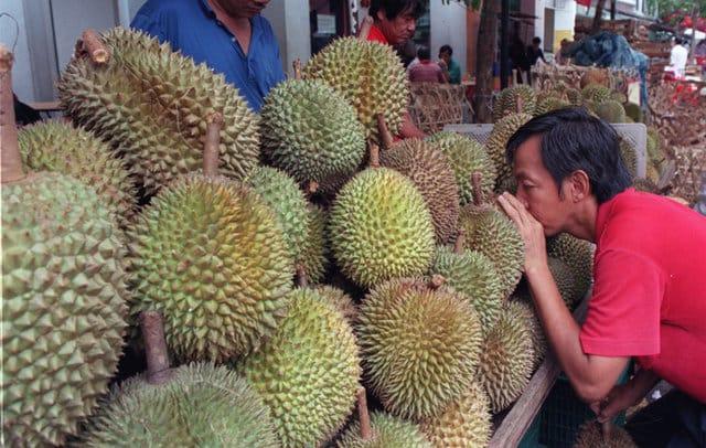 Secrets of famously pungent durian fruit revealed