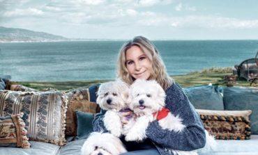 Twice as nice - Barbra Streisand cloned beloved dog