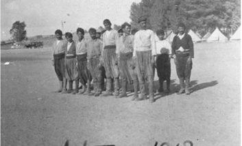 Rehabilitating the muleteers of World War I