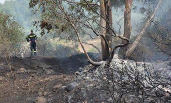 Huge Pano Pyrgos fire under control