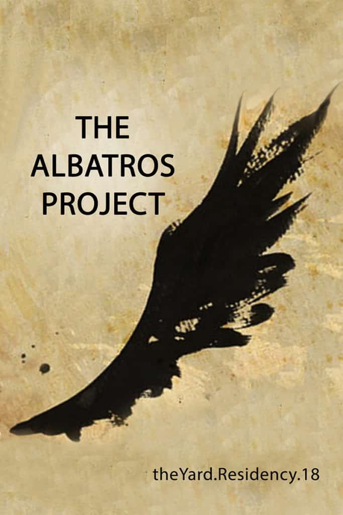 Albatros-@-RESIDENCY-teaser-683x1024 Musical identities shine through