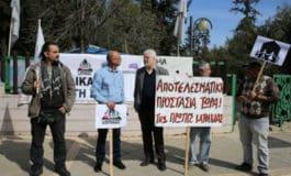 Unfair Estia preserves mediator status of politicians, economist says