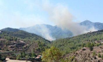 Macheras forest fire contained (Update 2)