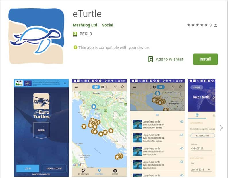 Public encouraged to download eTurtle app - Cyprus Mail