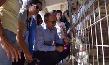 Disy adopts injured 'left-sensitive' stray dog
