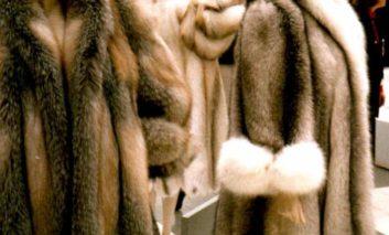 Fur coats worth €300,000 stolen in Limassol