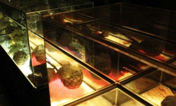 A kaleidoscope of an exhibition
