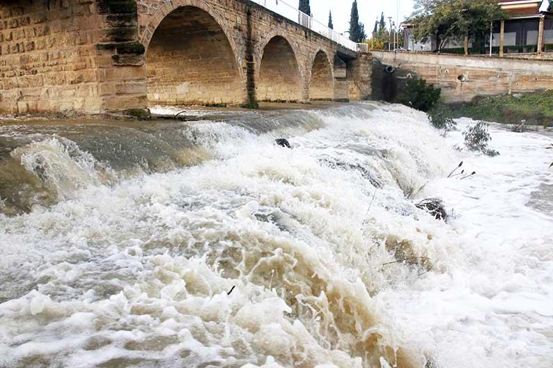 peristerona river 03 (1)