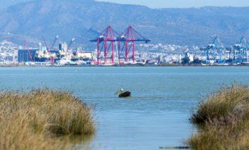 UK conservation funds for Akrotiri salt lake