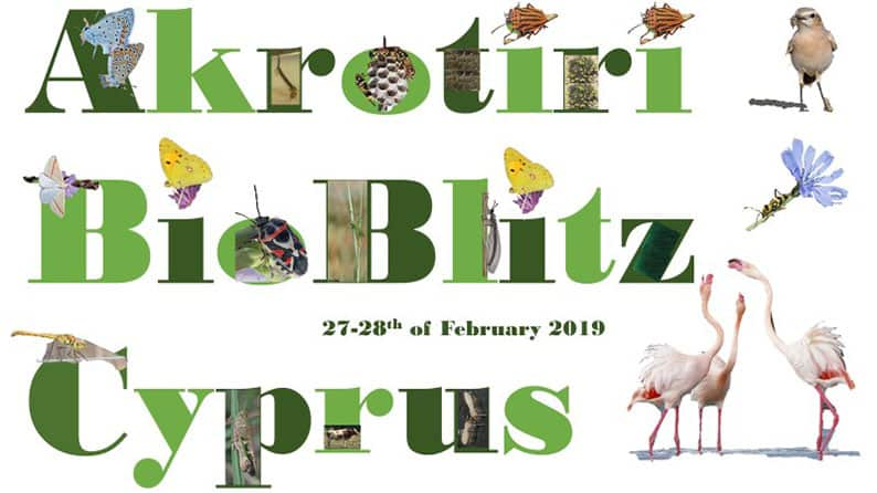First-ever Akrotiri 'BioBlitz' taking place this month