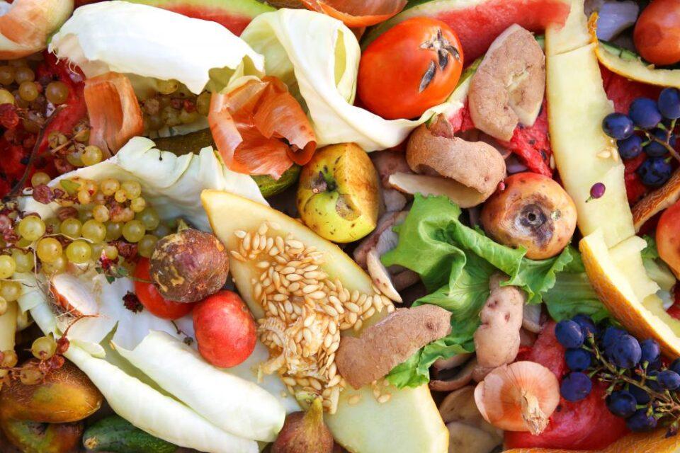 Food Waste By Victoria M Adobestock 290796363