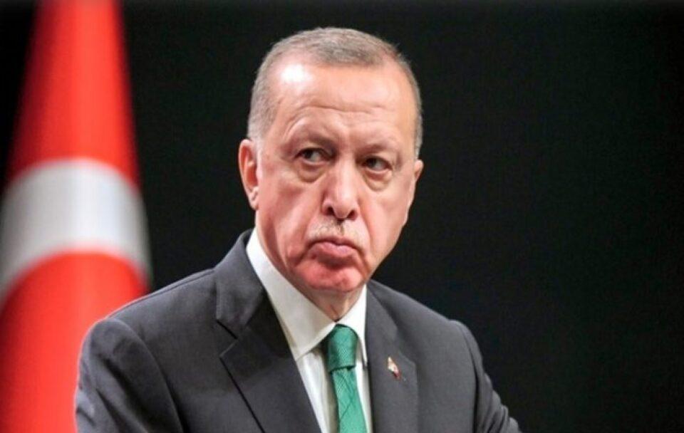 erdogan lips