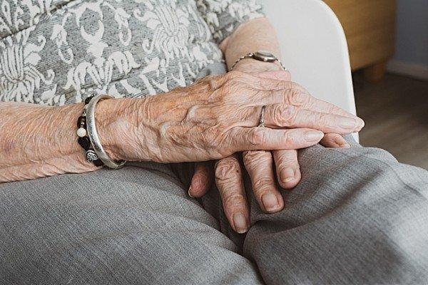 elderly web