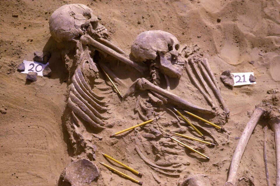 reuters sudan prehistoric bones