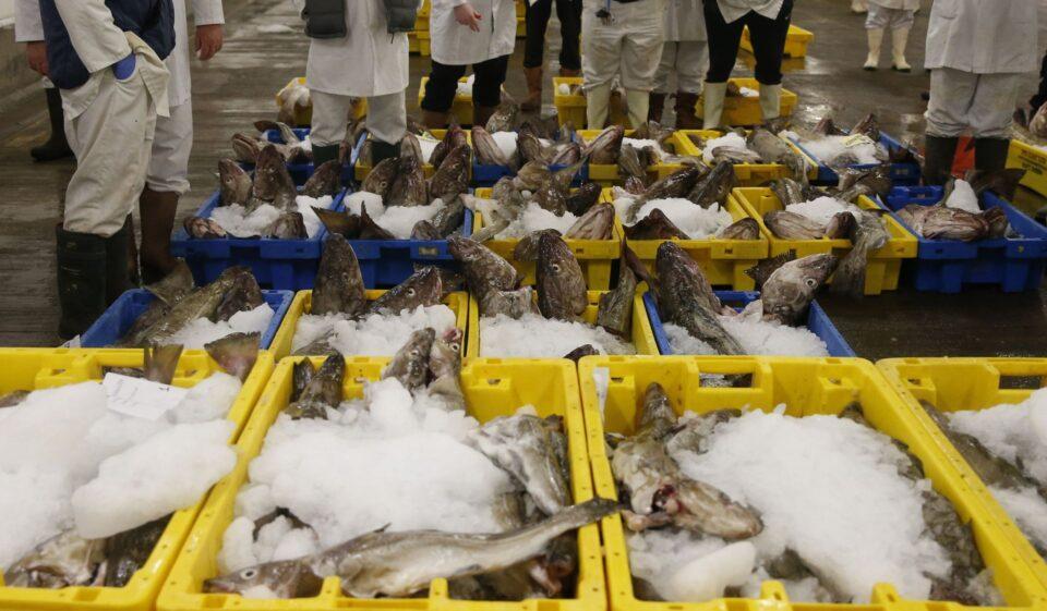 uk trade deal norway fish brexit european union boris johnson cyprus mail