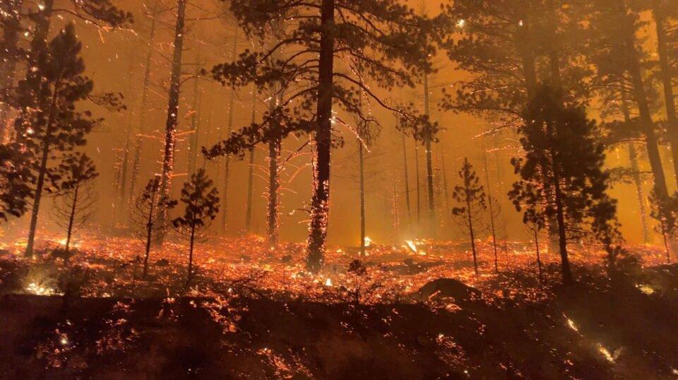 tamarack fire is seen in markleeville, california