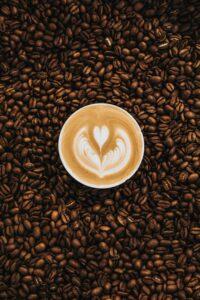 lim coffee fest