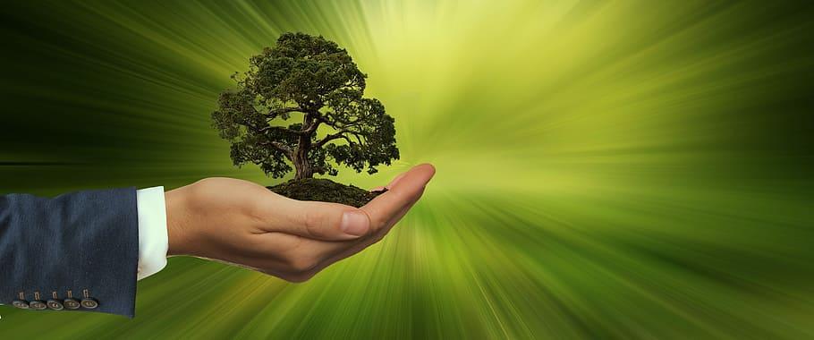 Hellenic Bank: sustainable development a major pillar of its strategic planning
